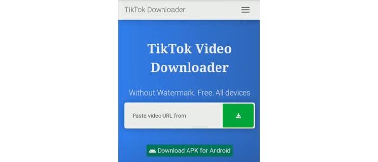 tiktok video downloader